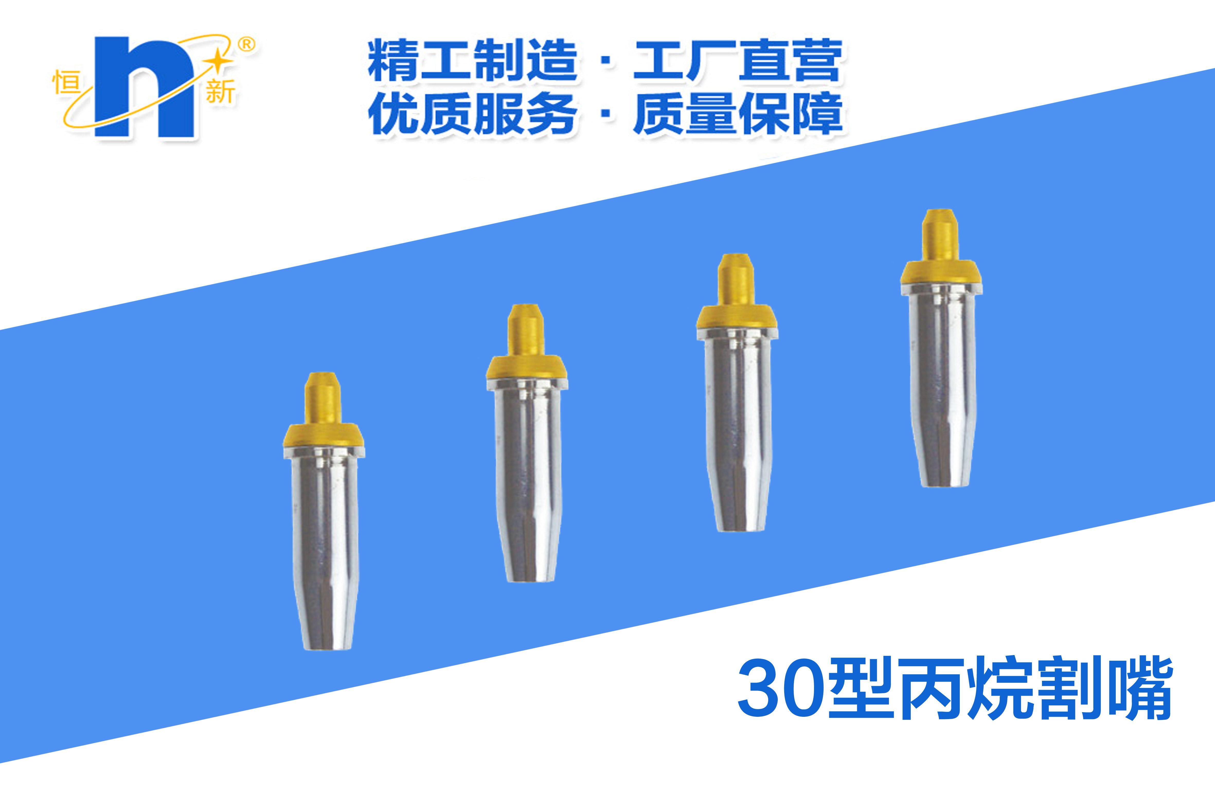G07-30型丙烷割嘴  恒新